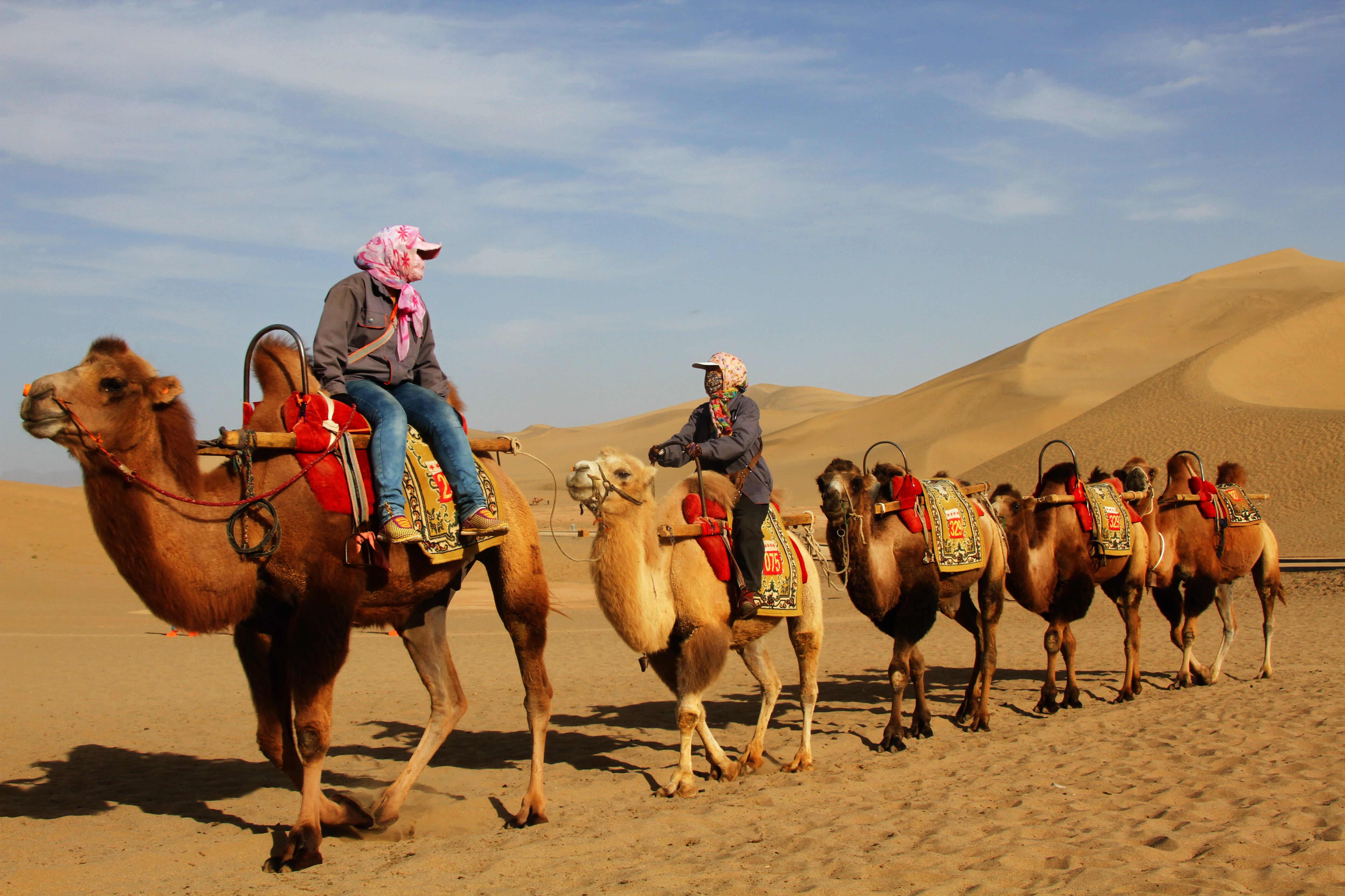 ckgbtmoykim traveling asias silk road